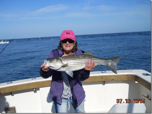 RI Striped bass Charter