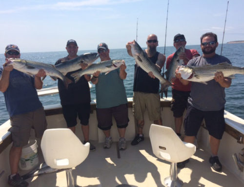 RI Deep Sea Charter Brings in 9 Striped Bass and 2 Blues