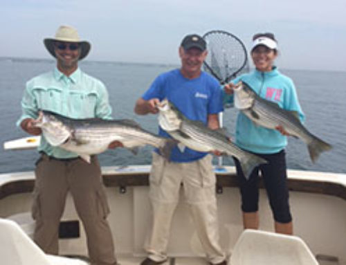 Jennifer, along with husband and father bring in 11 Striped Bass and numerous Sea Bass!