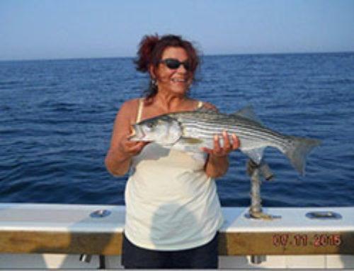 Striper & Flounder Charter