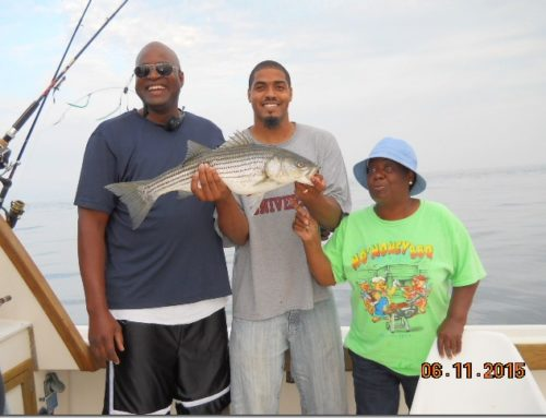 Aces Wild catches striper limit 6/14