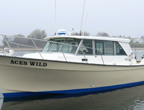 The Boat, Aces Wild 35′ Henrique Maine Coaster