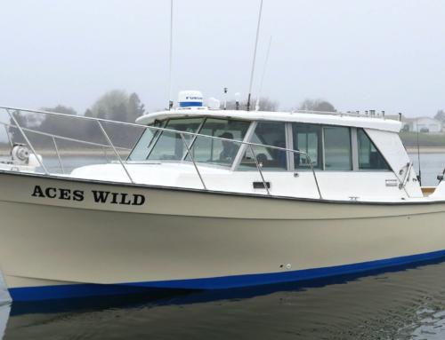 The Boat, Aces Wild 35′ Henrique Maine Coaster