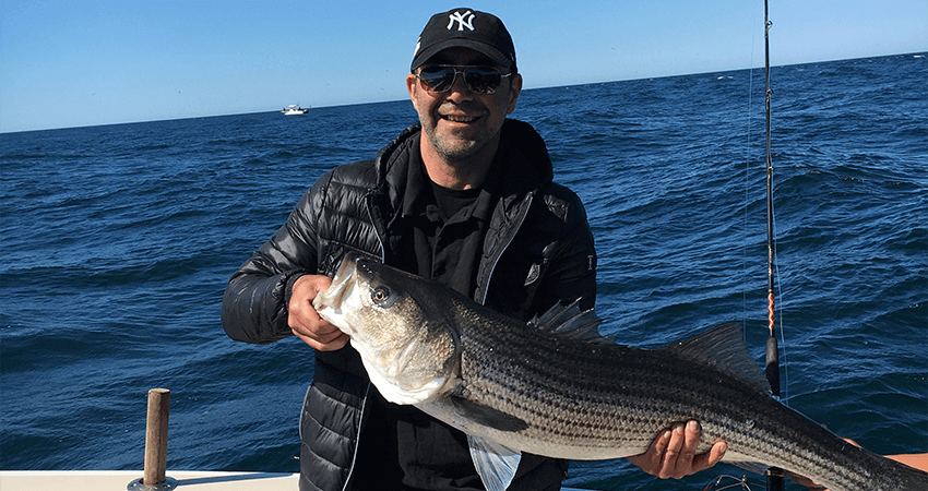 Striped Bass charter in RI on the Aces Wild