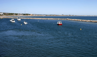 Aces Wild Block Island Fishing Charters