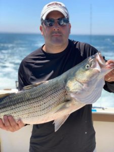 aces wild Rhode island striped bass fishing charters R7